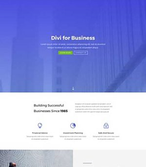 Business 10 Divi
