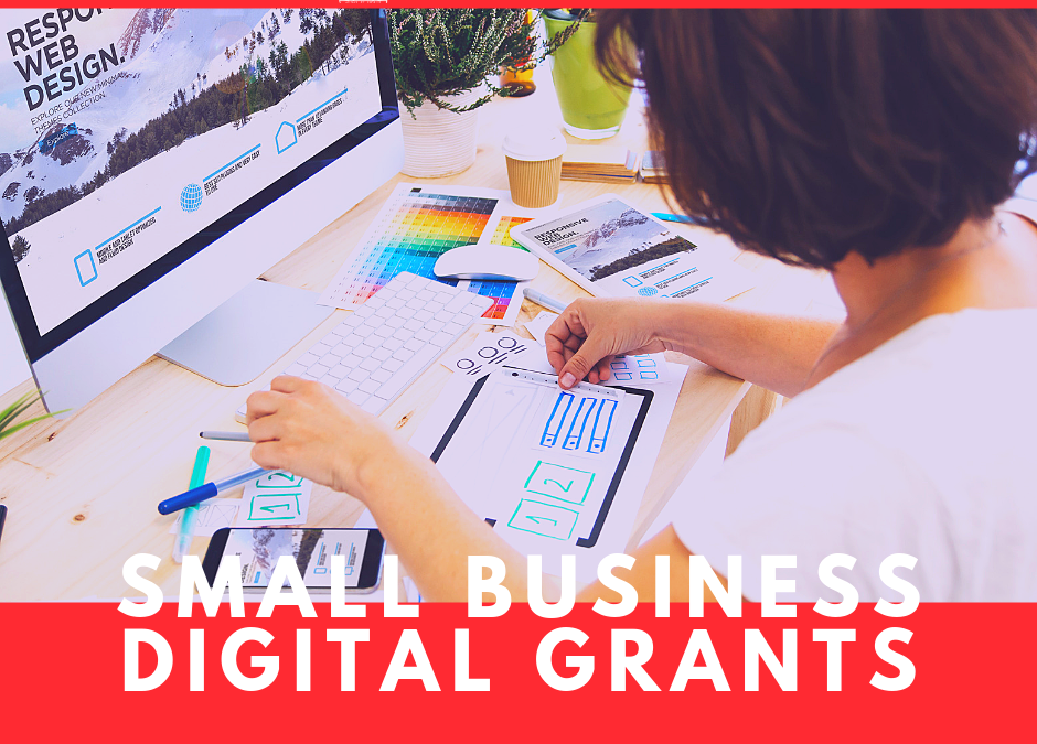Small Business Digital Grants